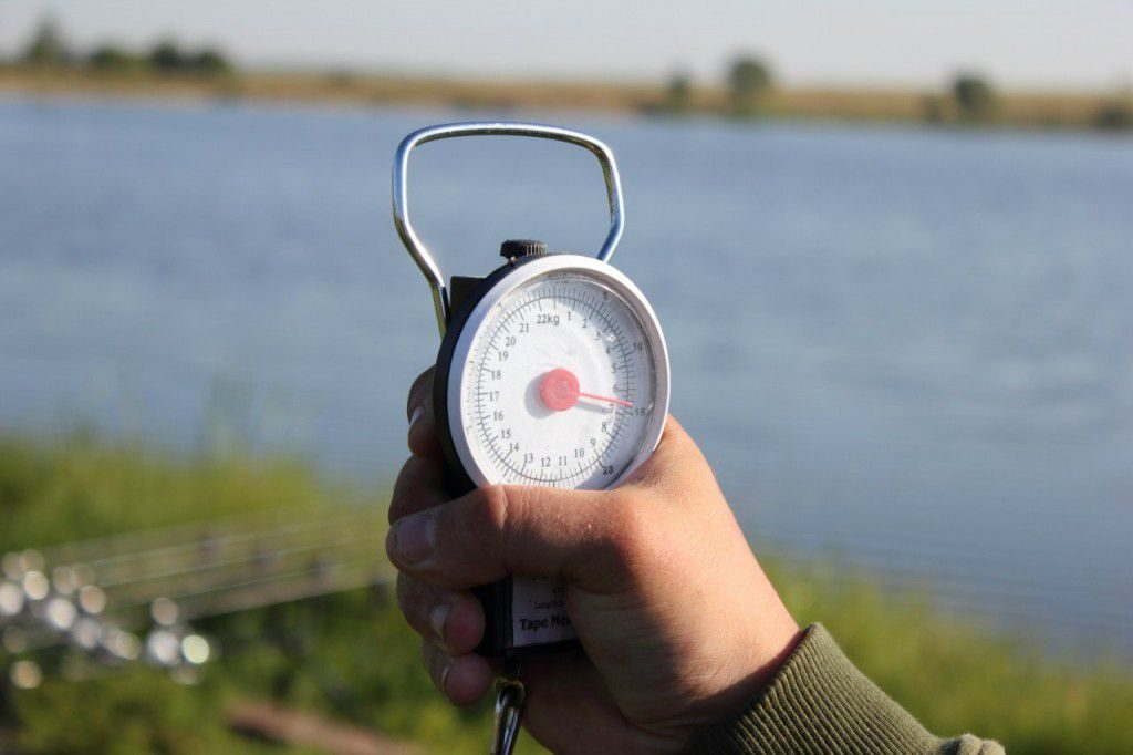 весы на рыбалке фото